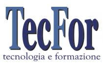 Logo TecFor